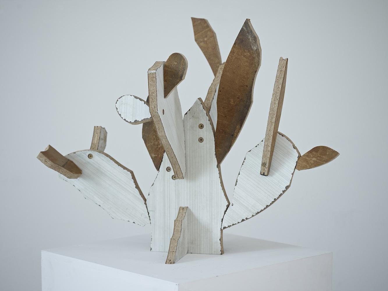 Cacti(Melamine)*2013