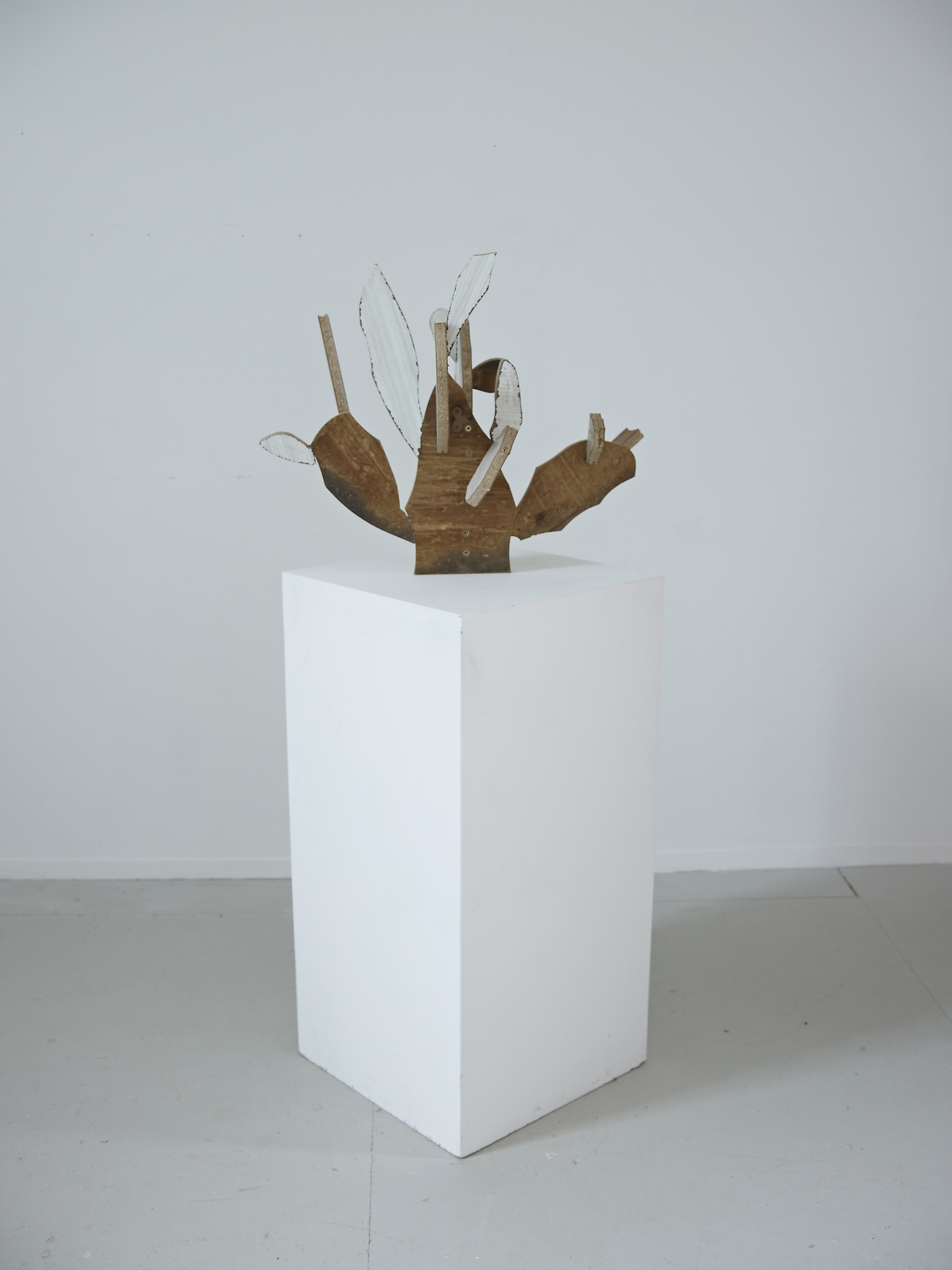 Cacti(Melamine)2013