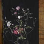 Still Life(Rose)detail1