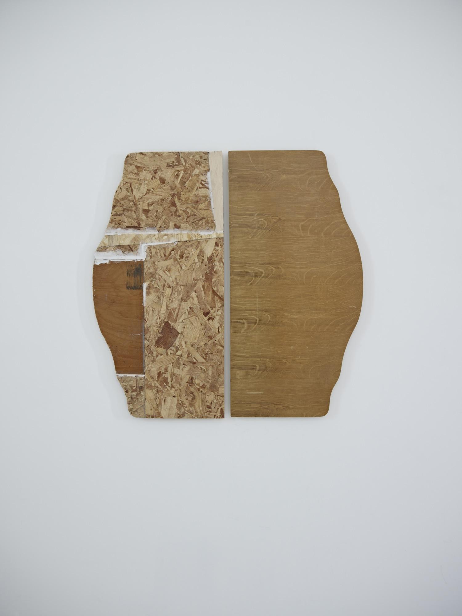Untitled (Salloon)2013