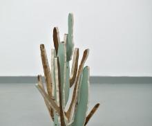 Cactus(OrganPipe)2014