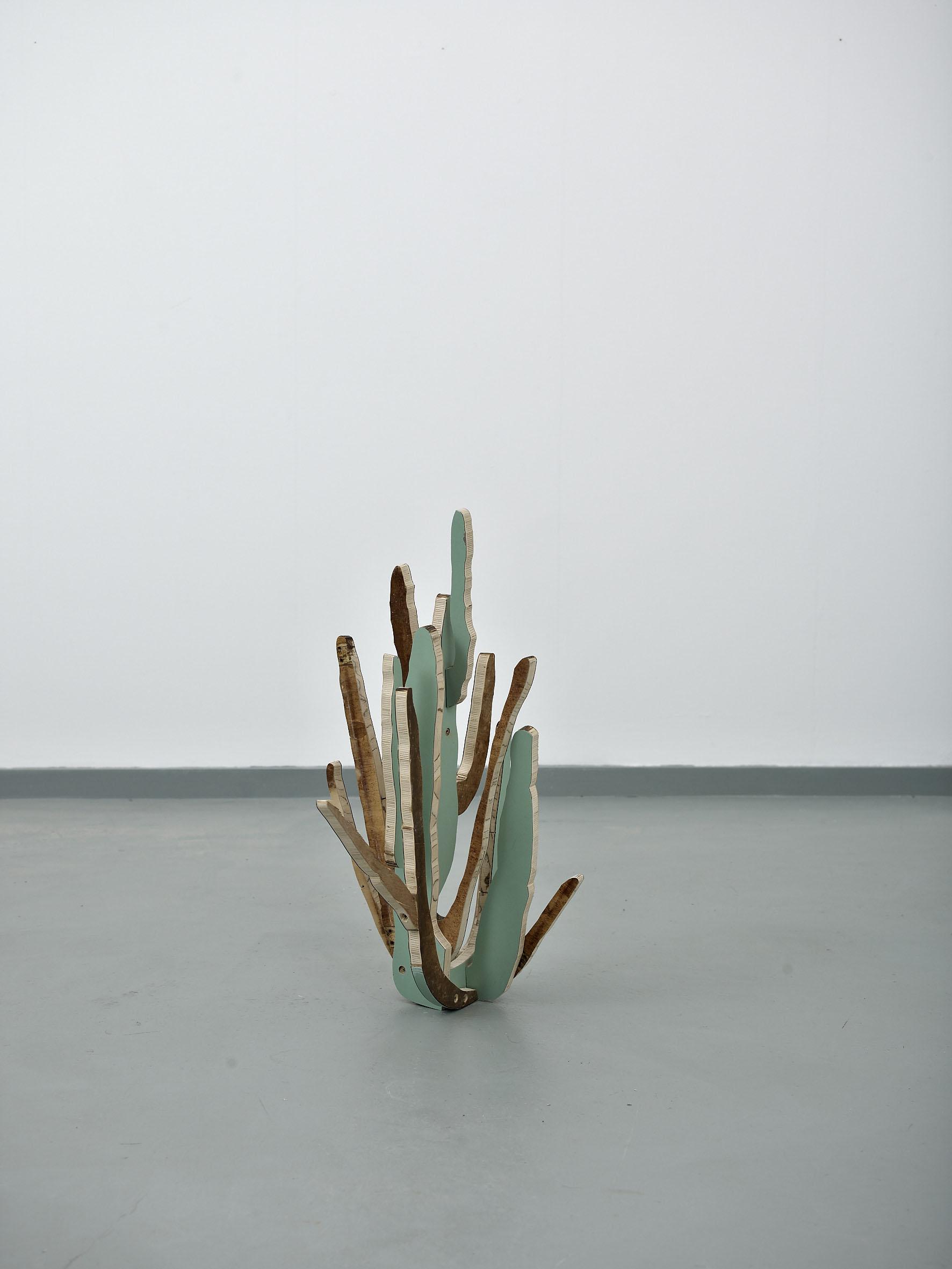Cactus(OrganPipe)2014*