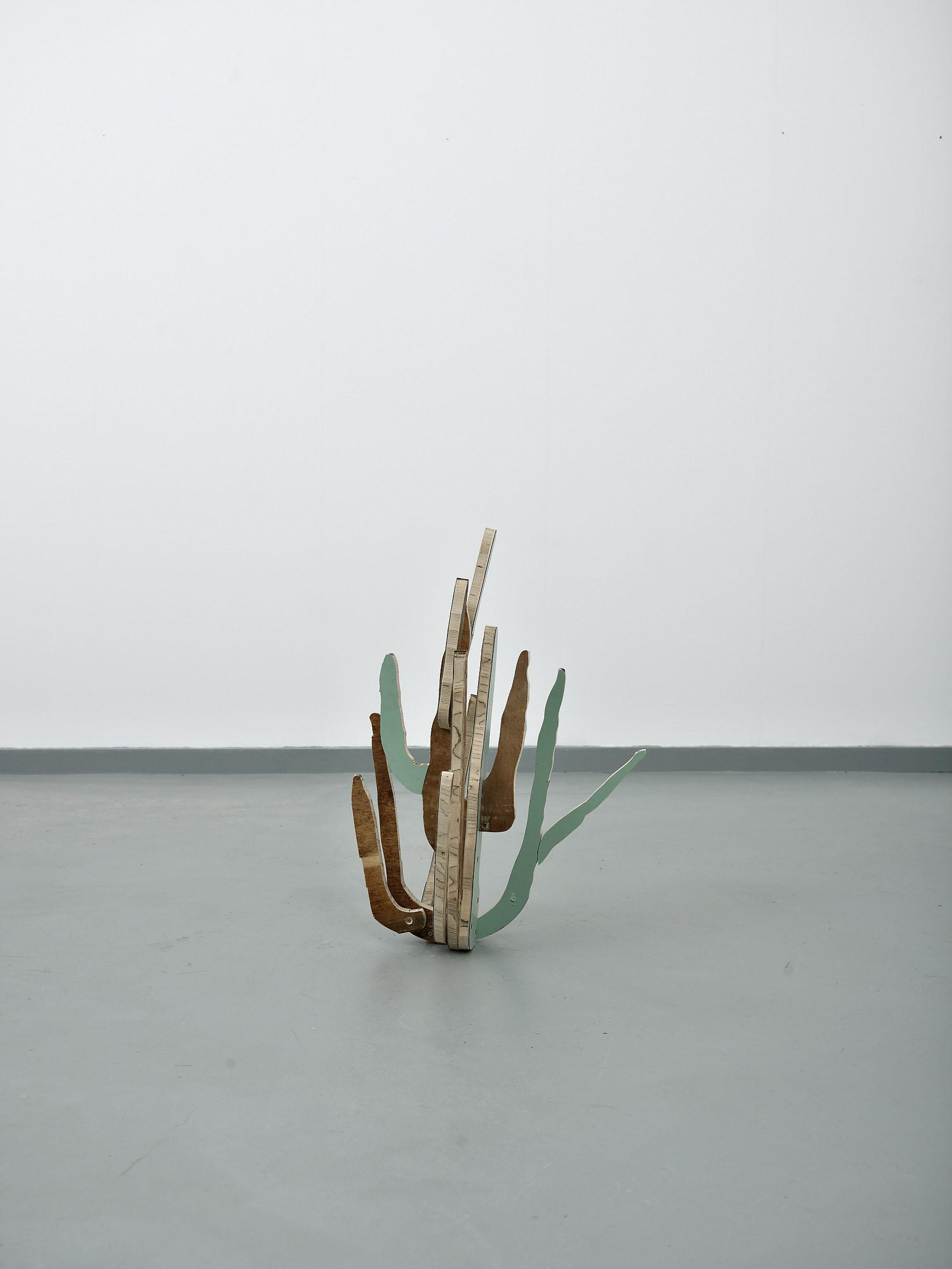 Cactus(OrganPipe)2014**