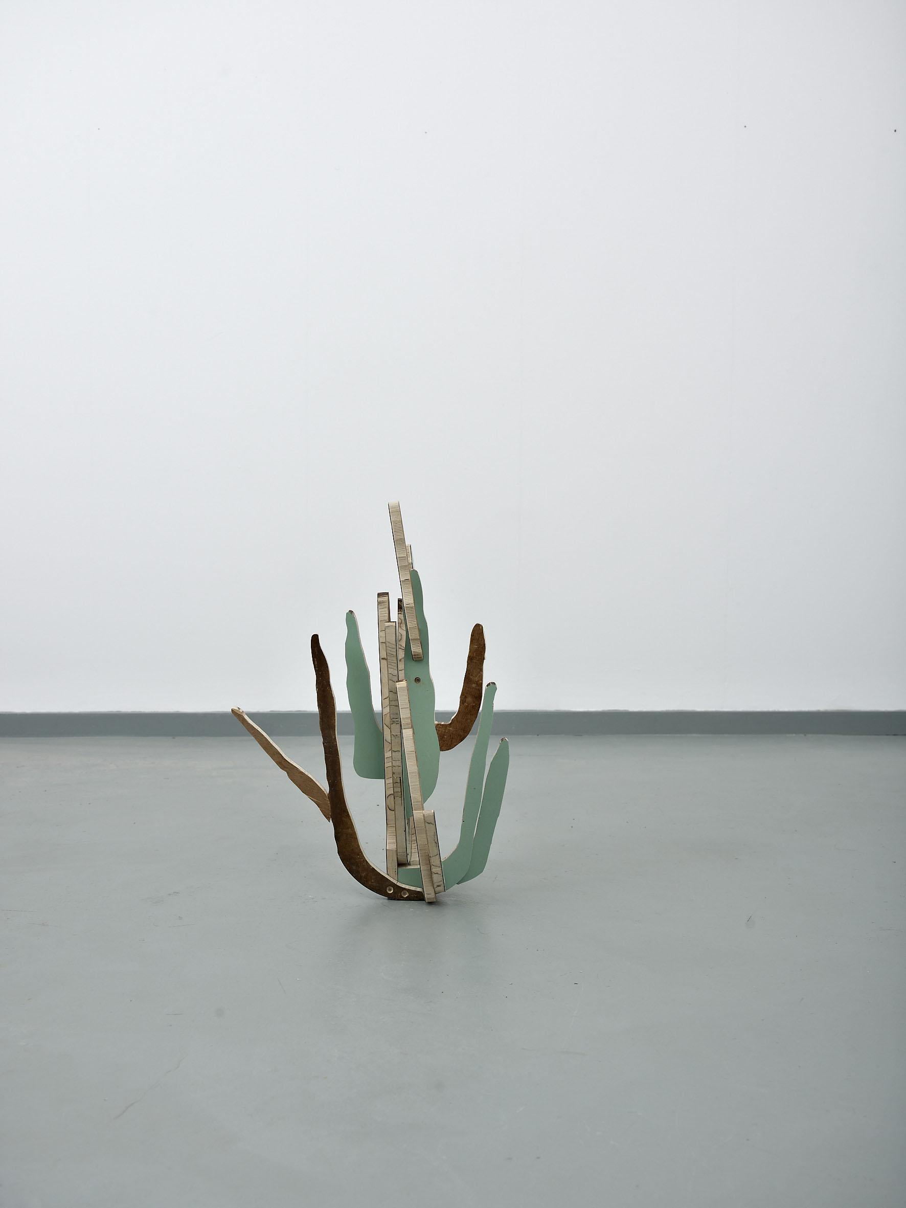 Cactus(OrganPipe)2014***