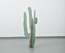 Cactus(Saguaro)2014**