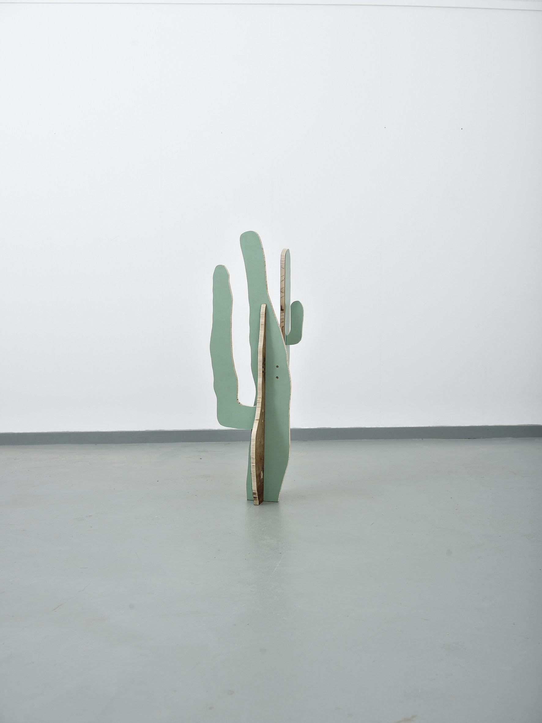 Cactus(Saguaro)2014***