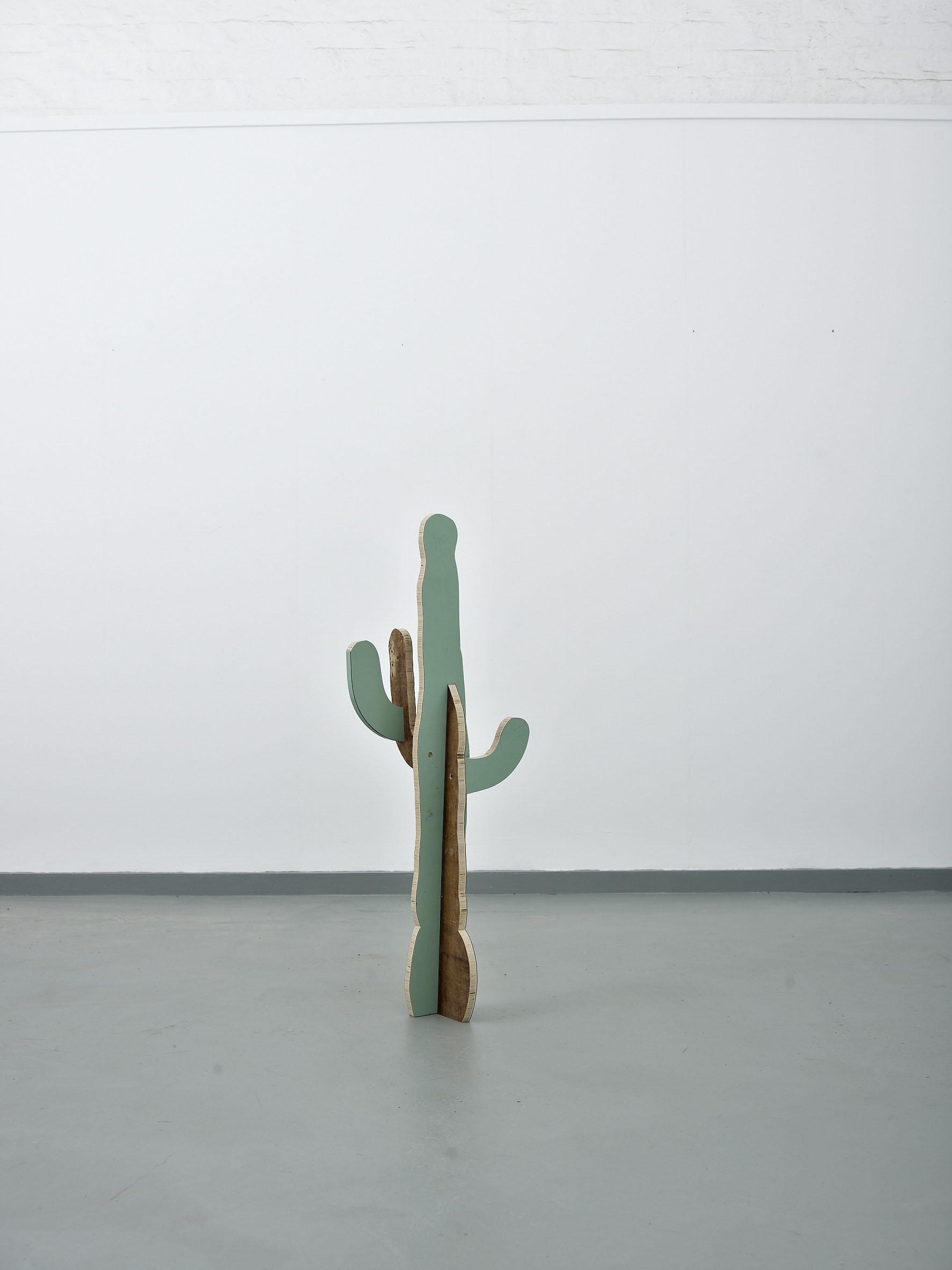Cactus(Saguaro)2014####