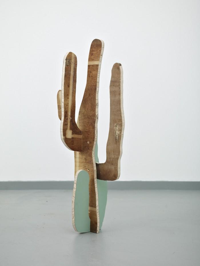 Cactus(Saguaro)2014back*
