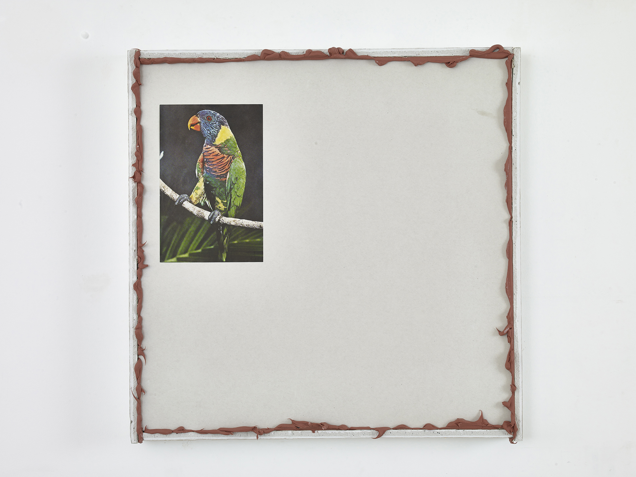 Untitled(Parrot)2015